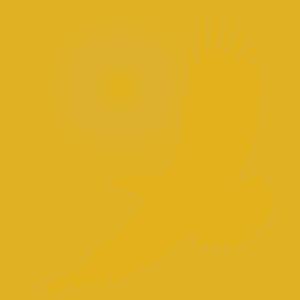 Logo Self-Empowering.org